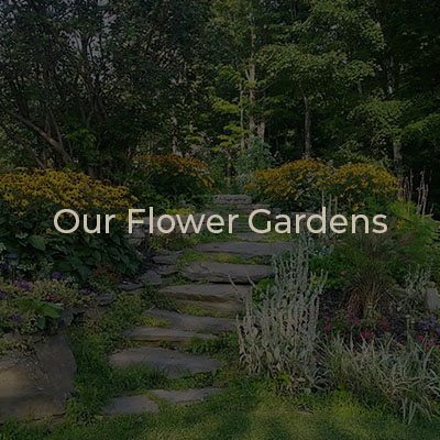 Our Flower Gardens